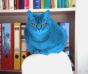 Zeit für die nächste Diabetes-Revolution: Auch Miaule heute ganz blau ;).