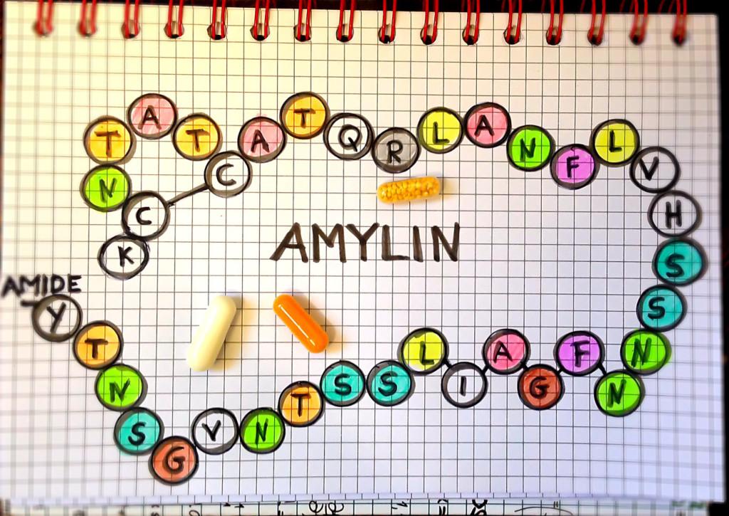 Benötigt Diabetiker auch Amylin neben Insulin?