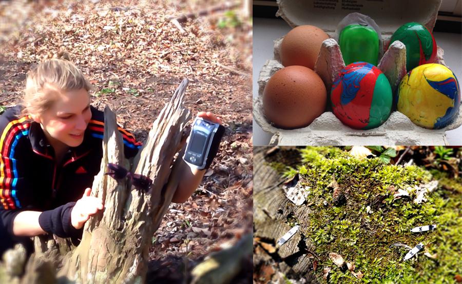 Wenn der Osterhase Diabetes hätte: OmniPod, Eiersuche im Wald