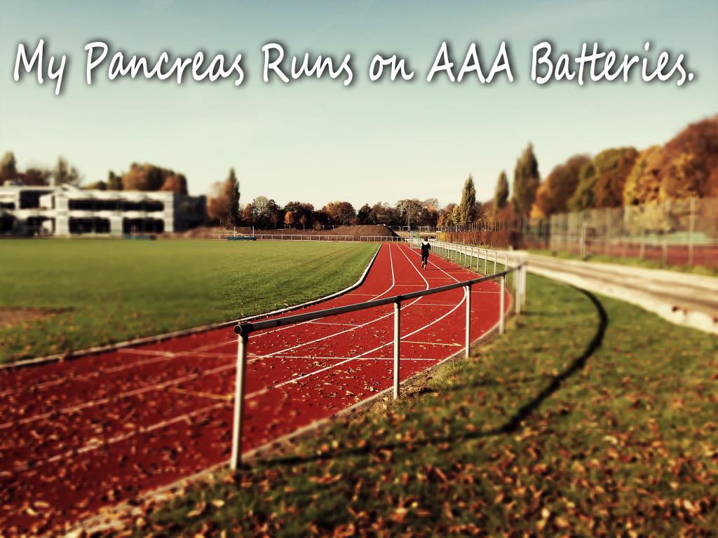 Plastik-Pankreas funktioniert mit AAA-Batterien. Läuft!