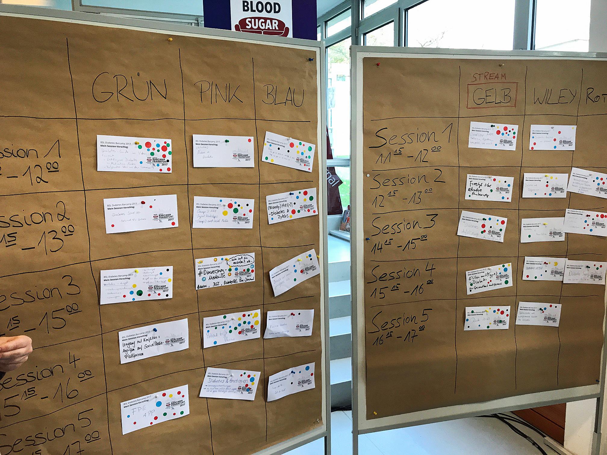 Diabetes Barcamp Themen